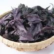 防腐効果や食中毒を予防する作用がある自然の着色料「赤しそ」